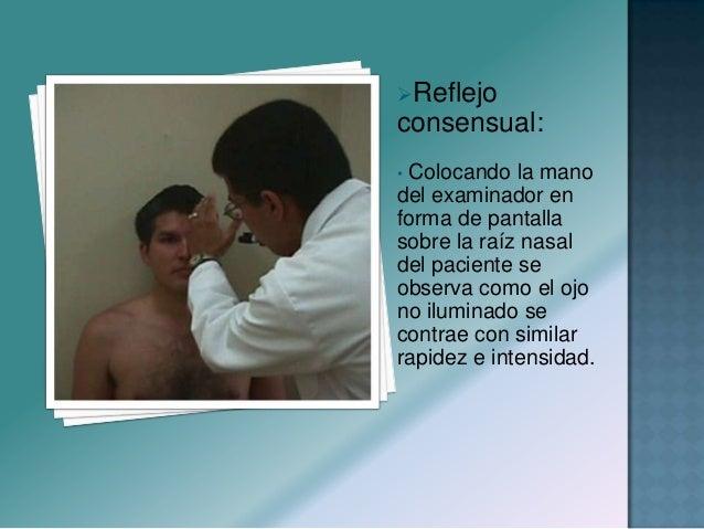  Nervio: mixto  Función: motora Y sensitiva  Inervación: músculos de la masticación  Ramas: Oftálmica, maxilar superio...