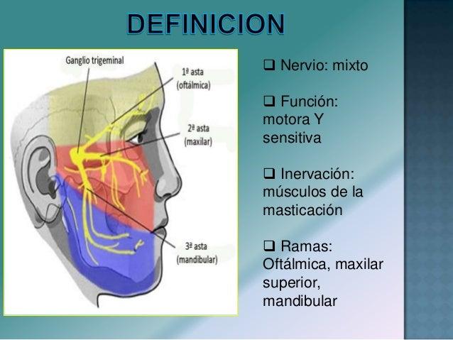  Parálisis Facial Central: Provocada por lesiones supra nucleares de diversas etiologías. Se traducen por una parálisis d...