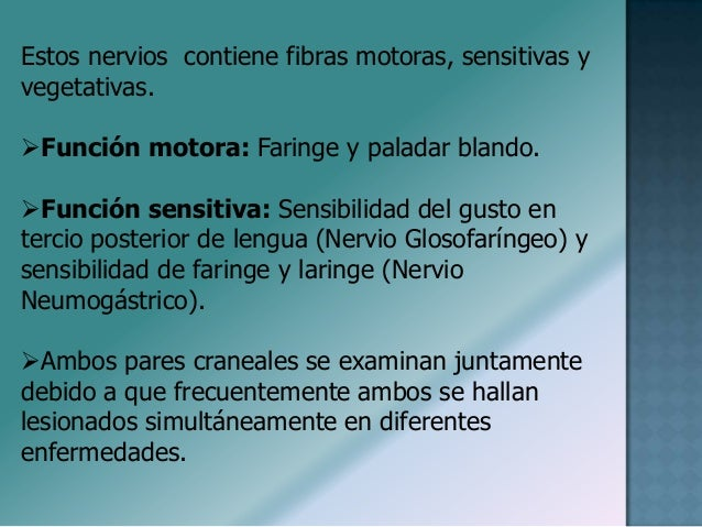 Semiologia Pares Craneales