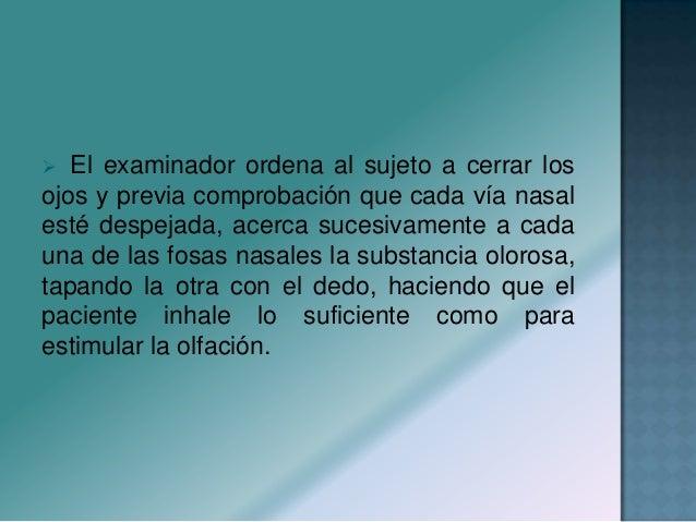  Se origina en la capa de células ganglionares de la retina, siendo su origen aparente el ángulo anterior del quiasma ópt...