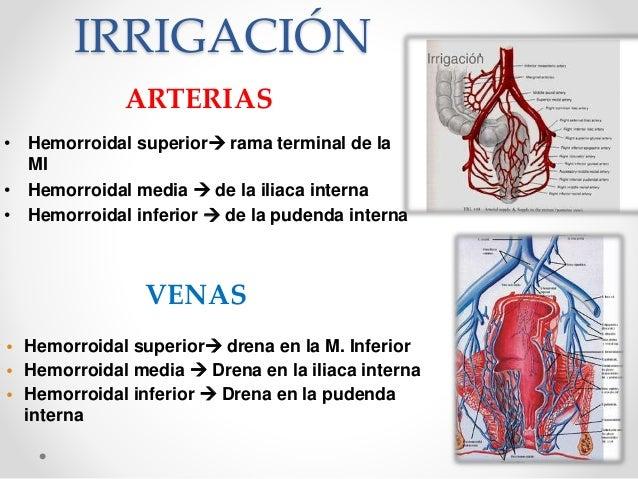 Semiologia proctologica.