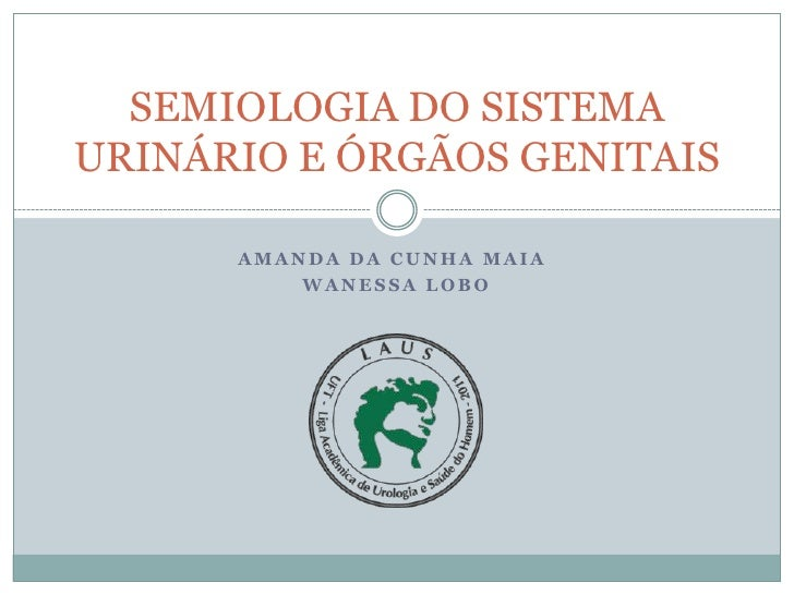 SEMIOLOGIA DO SISTEMAURINÁRIO E ÓRGÃOS GENITAIS      AMANDA DA CUNHA MAIA          WANESSA LOBO