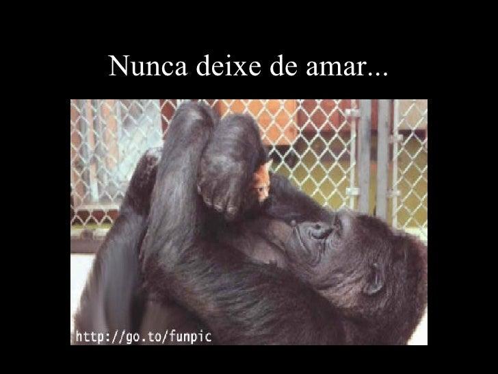 Nunca deixe de amar...