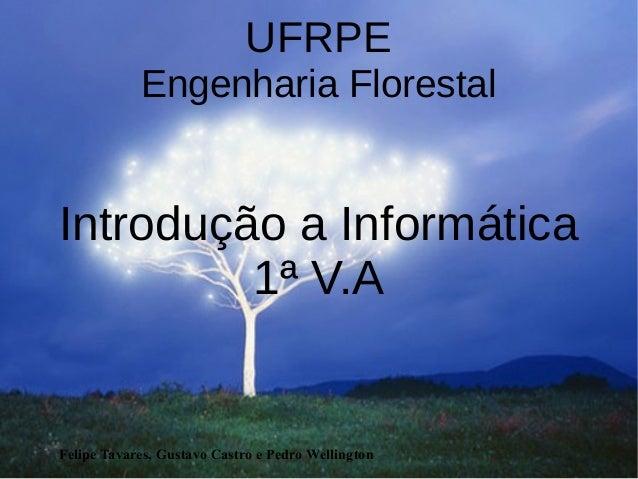 Felipe Tavares, Gustavo Castro e Pedro Wellington UFRPE Engenharia Florestal Introdução a Informática 1ª V.A
