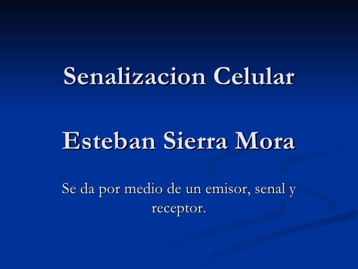 Senalizacion Celular Esteban Sierra Mora Se da por medio de un emisor, senal y receptor.