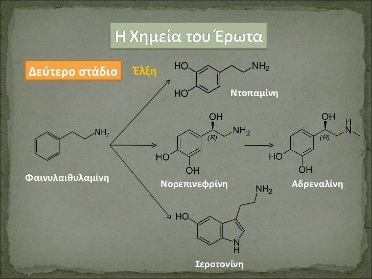 Έλξη Δεύτερο στάδιο Φαινυλαιθυλαμίνη Ντοπαμίνη Σεροτονίνη Νορεπινεφρίνη  Αδρεναλίνη
