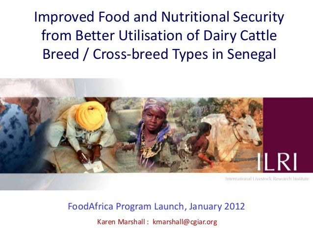 Improved Food and Nutritional Security from Better Utilisation of Dairy Cattle Breed / Cross-breed Types in Senegal     Fo...