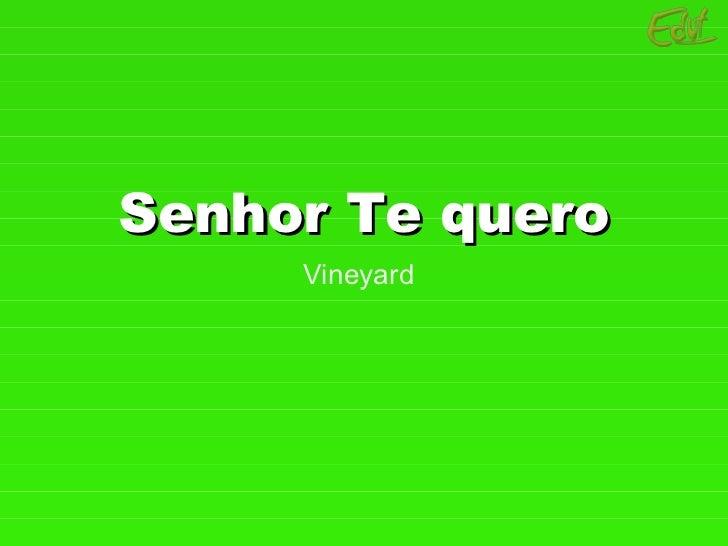 Senhor Te quero Vineyard