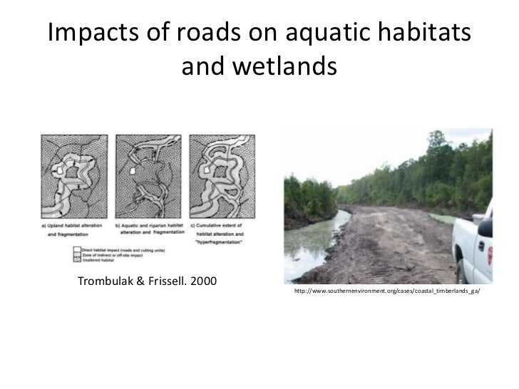 the impact of habitat disturbance Minimizing the impact of development on wildlife: actions for local  such disturbance can impact reproduction and survivorship  the impact on habitat.