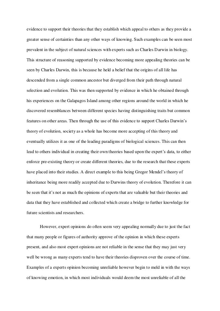 senior seminar expert opinion final essay