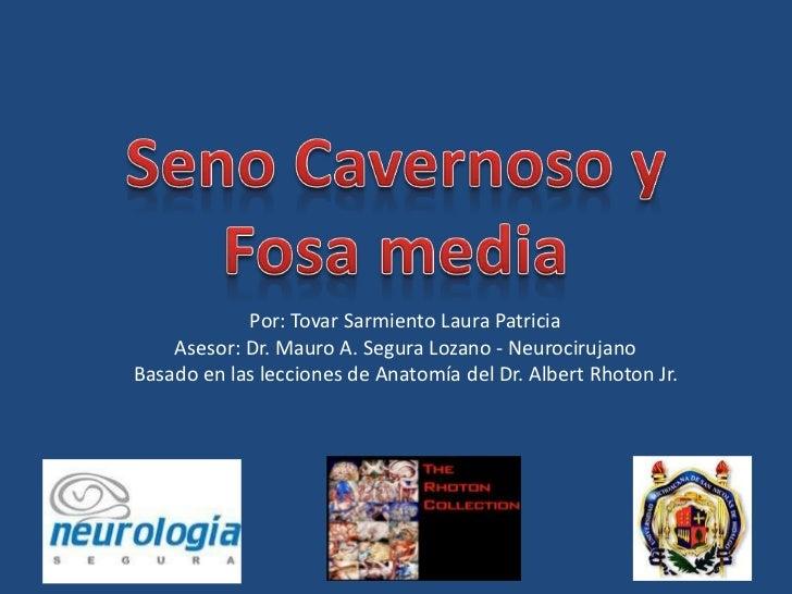 Por: Tovar Sarmiento Laura Patricia    Asesor: Dr. Mauro A. Segura Lozano - NeurocirujanoBasado en las lecciones de Anatom...