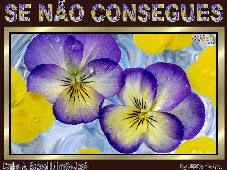 SE NÃO CONSEGUES Carlos A. Baccelli / Irmão José. By JRCordeiro.