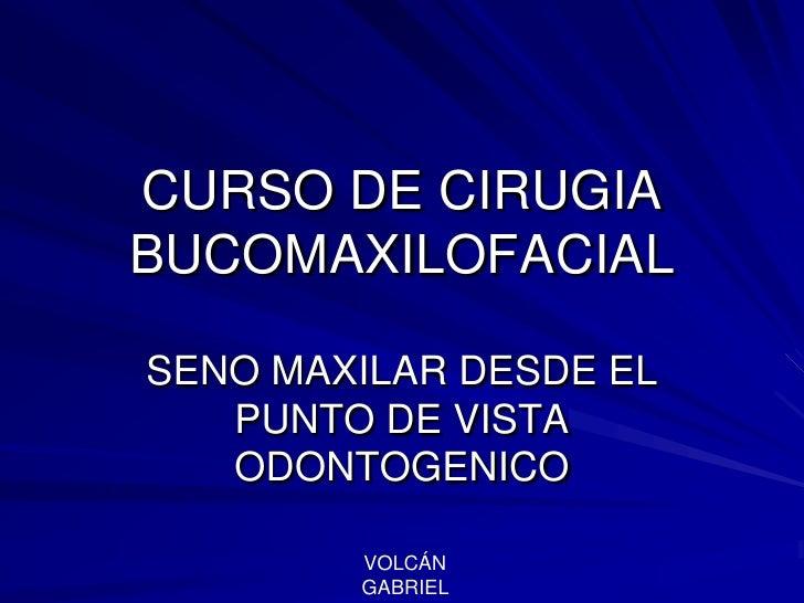 CURSO DE CIRUGIA BUCOMAXILOFACIAL<br />SENO MAXILAR DESDE EL PUNTO DE VISTA ODONTOGENICO<br />VOLCÁN GABRIEL <br />
