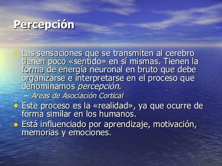 Sensaci n y_percepcion_los_sentidos_subgraduado Slide 2