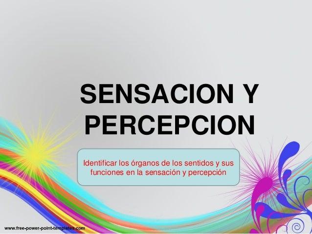 SENSACION Y PERCEPCION Identificar los órganos de los sentidos y sus funciones en la sensación y percepción