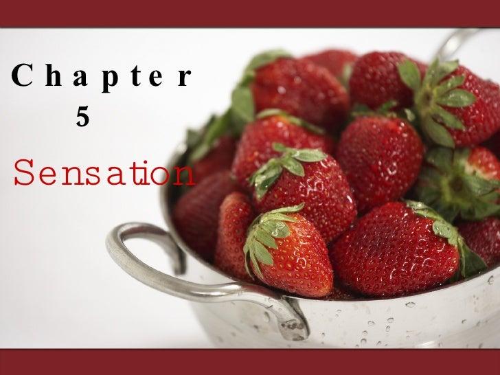 Chapter 5  Sensation