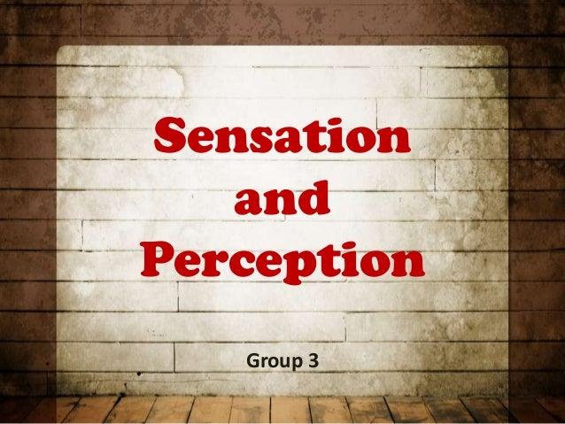 Sensation   andPerception   Group 3