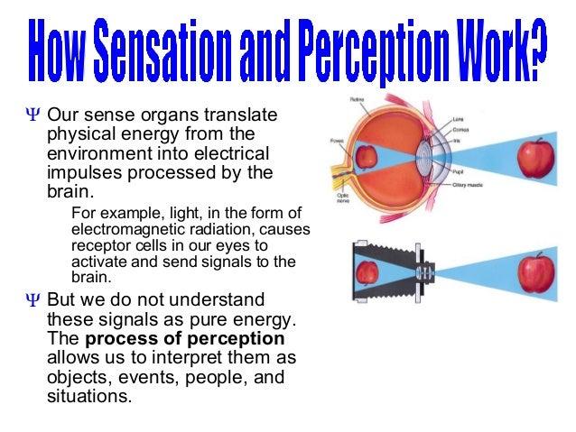 Sensation And Perception 9th Edition Pdf