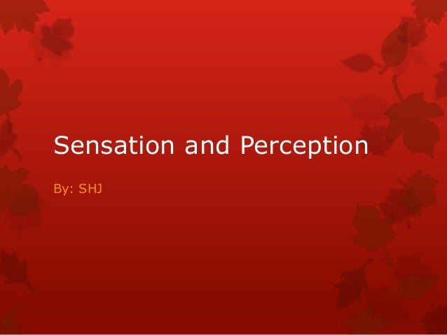 Sensation and Perception By: SHJ