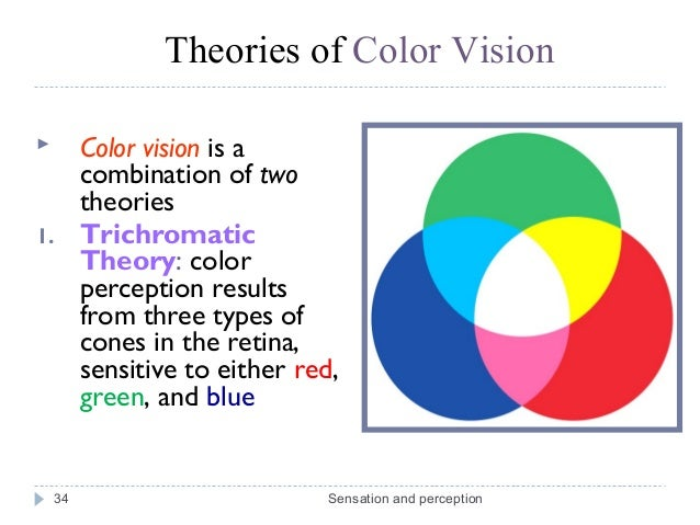 color blindness essays Free essay: color blindness many people refer to problems with one's ability to  see color as color blindness, however, unless a person can't see any color at.