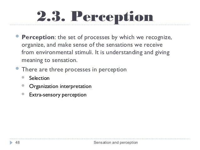 Perception definition and features