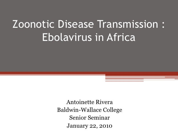Zoonotic Disease Transmission : Ebolavirus in Africa<br />Antoinette Rivera<br />Baldwin-Wallace College<br />Senior Semin...
