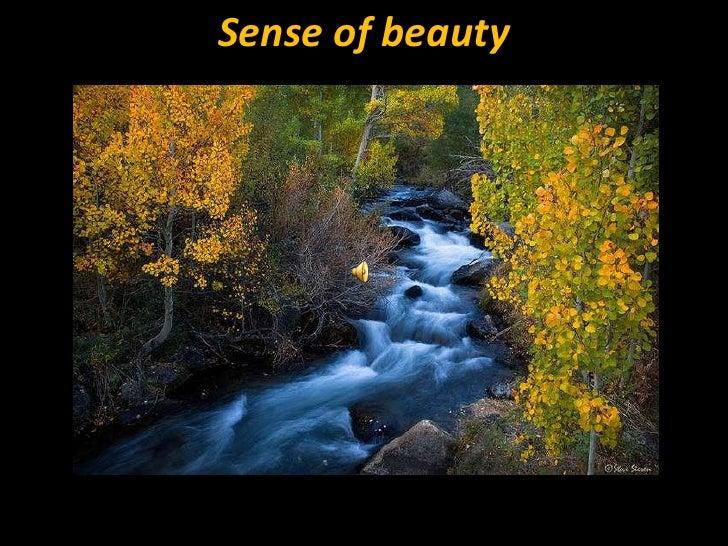 Sense of beauty<br />