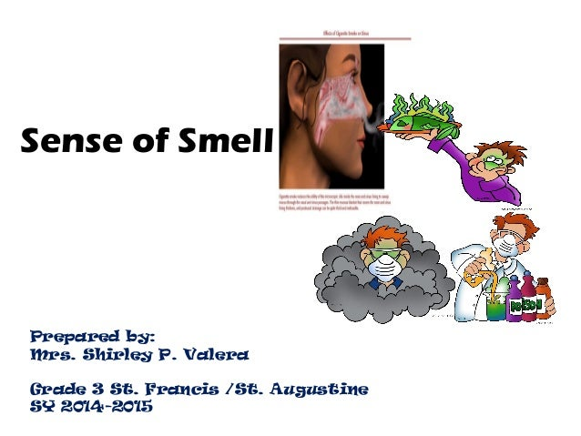 Sense of Smell Prepared by: Mrs. Shirley P. Valera Grade 3 St. ...