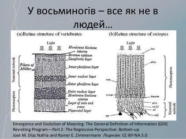 У восьминогів – все як не в людей… Emergence and Evolution of Meaning: The General Definition of Information (GDI) Revisit...