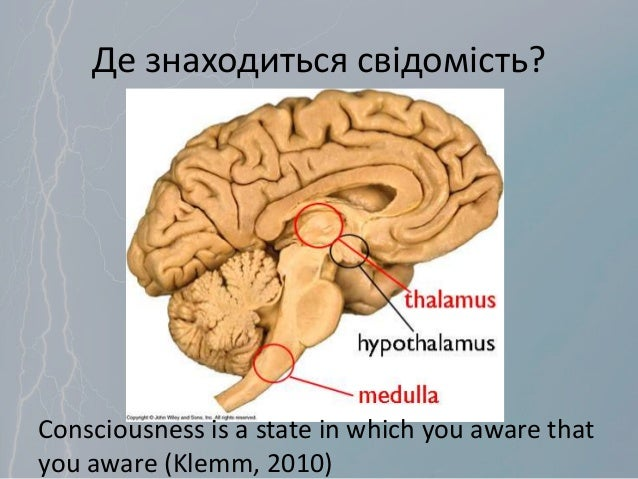 Де знаходиться свідомість? Consciousness is a state in which you aware that you aware (Klemm, 2010)