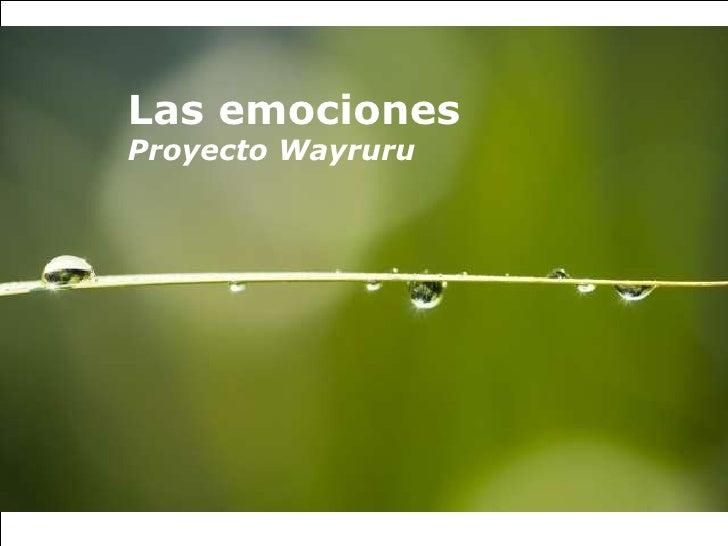 Las emociones Proyecto Wayruru