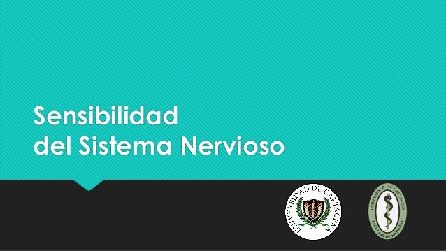Sensibilidad del Sistema Nervioso