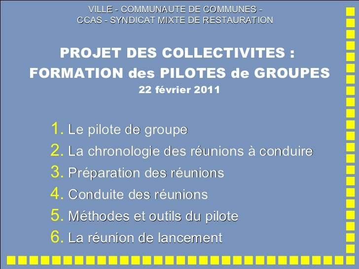 PROJET DES COLLECTIVITES :  FORMATION des PILOTES de GROUPES 22 février 2011 VILLE - COMMUNAUTE DE COMMUNES - CCAS - SYNDI...