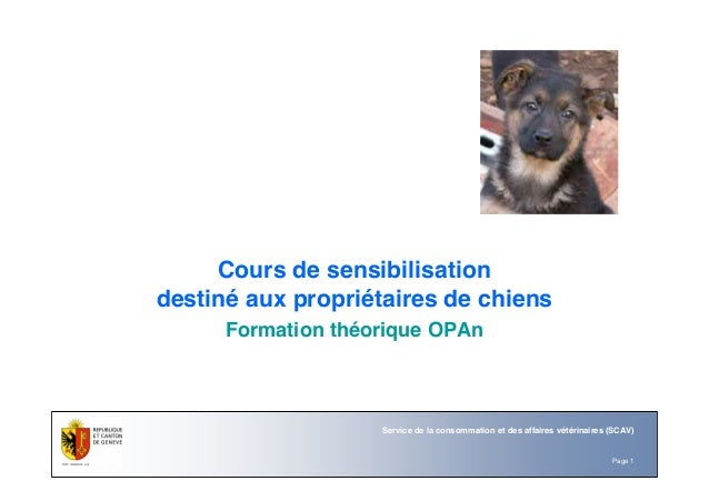 Page 1 Service de la consommation et des affaires vétérinaires (SCAV) Cours de sensibilisation destiné aux propriétaires d...