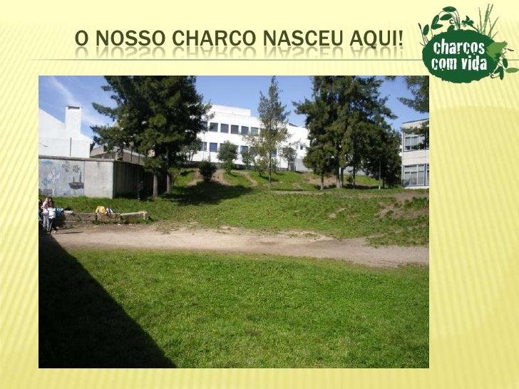 O NOSSO CHARCO NASCEU AQUI!