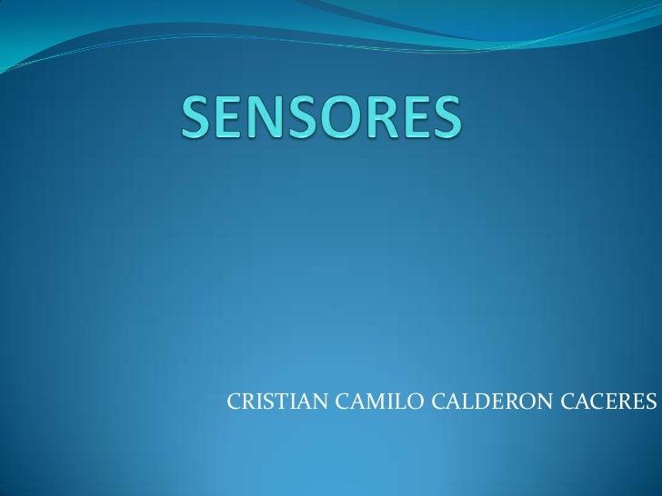 CRISTIAN CAMILO CALDERON CACERES