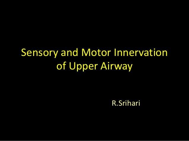 Sensory and Motor Innervation of Upper Airway R.Srihari