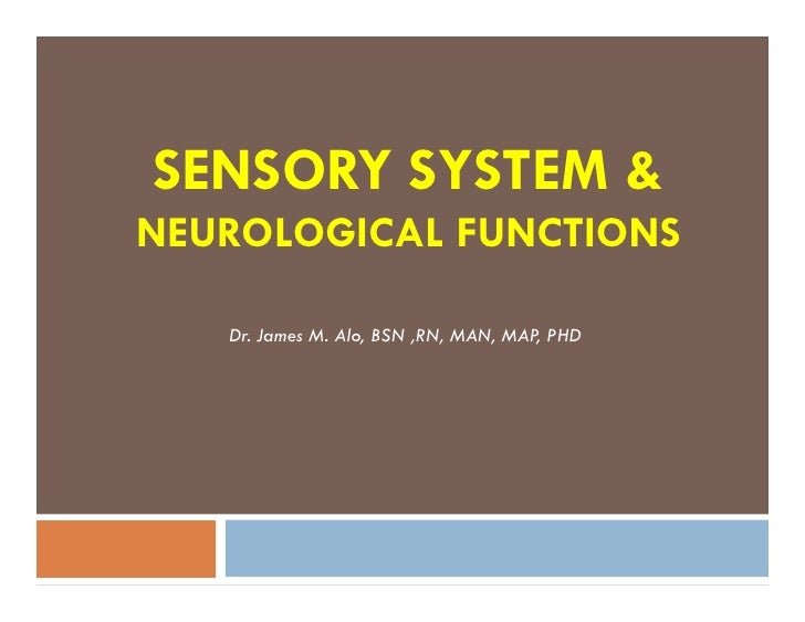 SENSORY SYSTEM &NEUROLOGICAL FUNCTIONS   Dr. James M. Alo, BSN ,RN, MAN, MAP PHD                                      ,