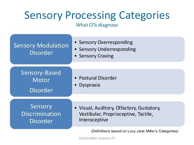 Sensory awareness workshop for Visual motor processing disorder