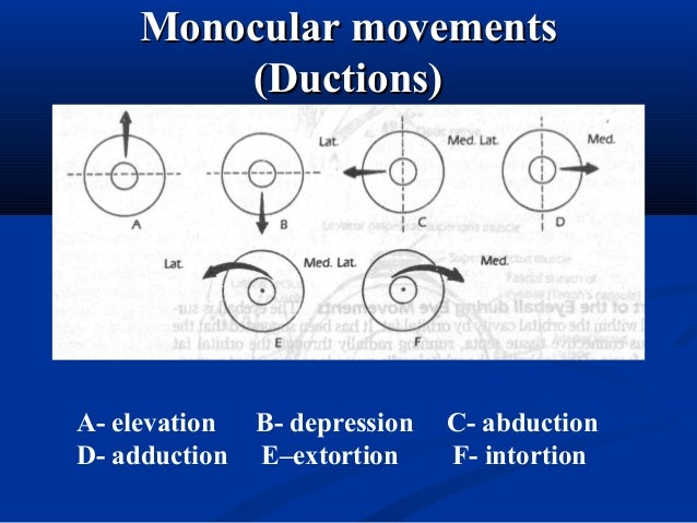 Hirschberg's testHirschberg's test Amount of deviation: note location of corneal light reflexAmount of deviation: note loc...