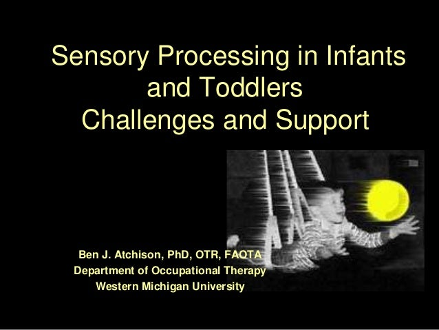 Sensory Processing in Infants and Toddlers Challenges and Support Ben J. Atchison, PhD, OTR, FAOTA Department of Occupatio...