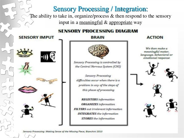 """sensations and brain processes smart Sensations and grain processes george graham and just less than 40 since j j c smart's """"sensations and brain processes"""" appeared, in its first version."""