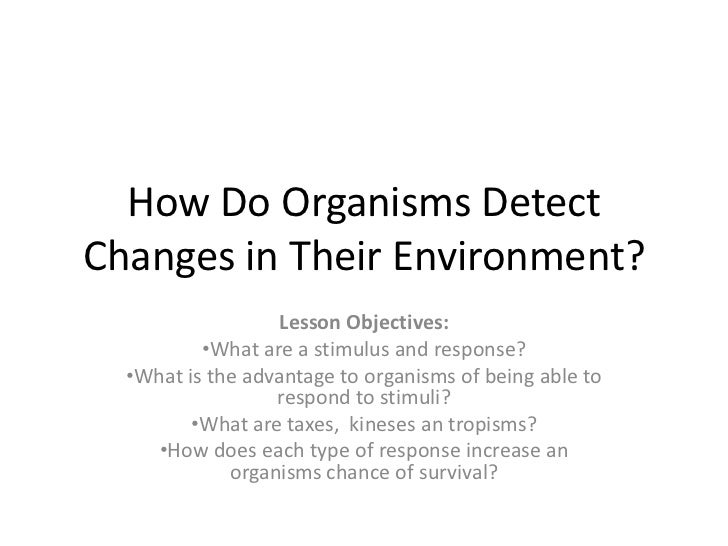 How Do Organisms DetectChanges in Their Environment?                  Lesson Objectives:          •What are a stimulus and...