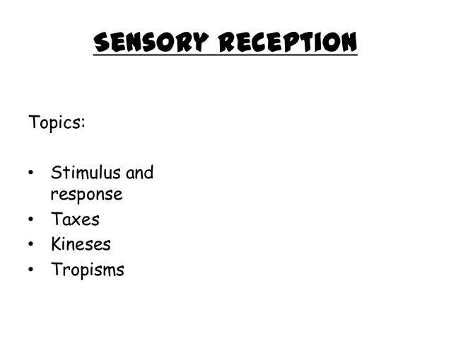 sensory reception stimulus and response Campbell biology reece •urry stimulus sensory receptor cell stimulus stimulus leads to the response of a sensory receptor varies with intensity of stimuli.