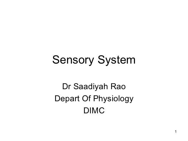 Sensory System Dr Saadiyah RaoDepart Of Physiology       DIMC                       1