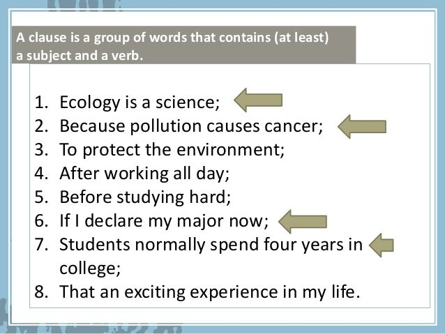 how to use ecology in a sentence