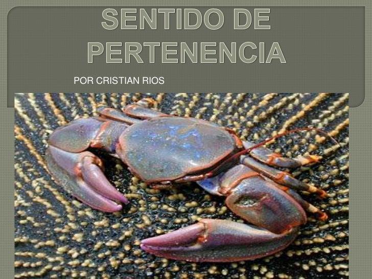 SENTIDO DE PERTENENCIA<br />POR CRISTIAN RIOS<br />