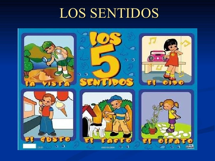 Sentidos for Mural de los 5 sentidos