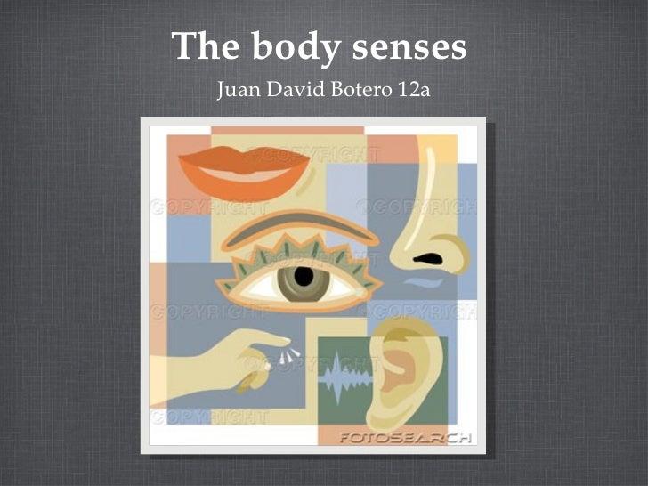 The body senses  <ul><li>Juan David Botero 12a </li></ul>