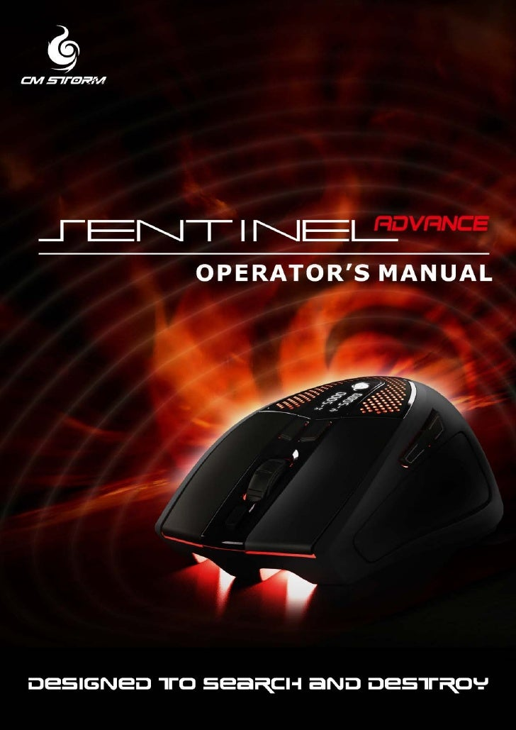 CMSTORM SENTINEL ADVANCE   TABLE OF CONTENTS              Introduction                                                    ...